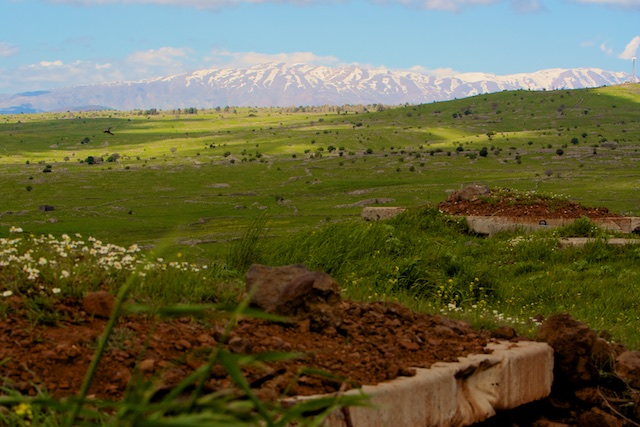 Zicht op Mount Hermon