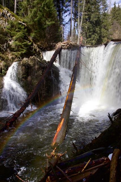 In de Rotenbach-schlucht is een dam aangelegd waarover een waterval zich stort. Met het opeengehoopte water wekt een waterkrachtcentrale 400 kW electriciteit op