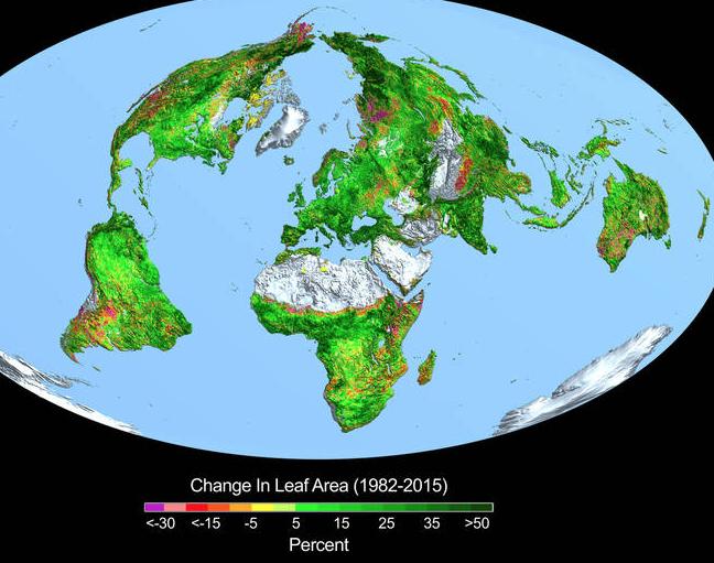 Een spectaculair groenere aarde dankzij de verrijking van de atmosfeer met groeikasgas CO2