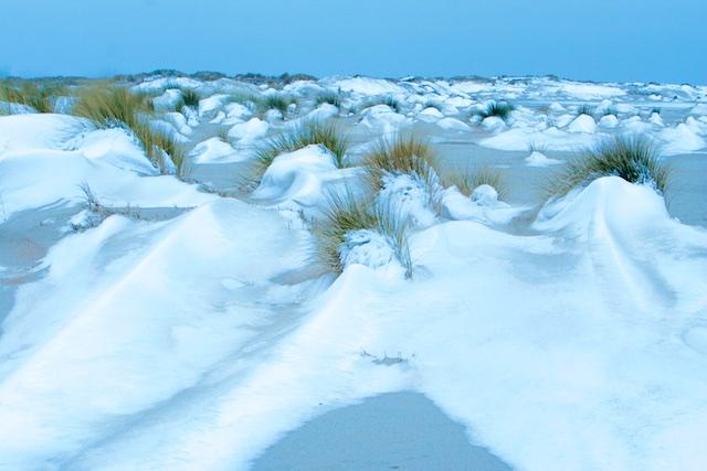 Hors Texel winter 2011: De ijstijd nog even vooruit schuiven: ik ga er voor!
