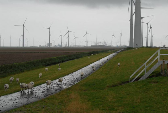 emmapolder-eemshaven cr590