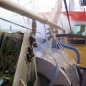 Spoelsoorteermachine, ingevoerd om overleving bijvangst te verbeteren
