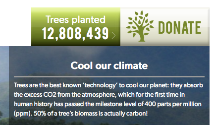 We Forest haalt haar niet winst uit donaties voor bosplant uit naam van klimaat