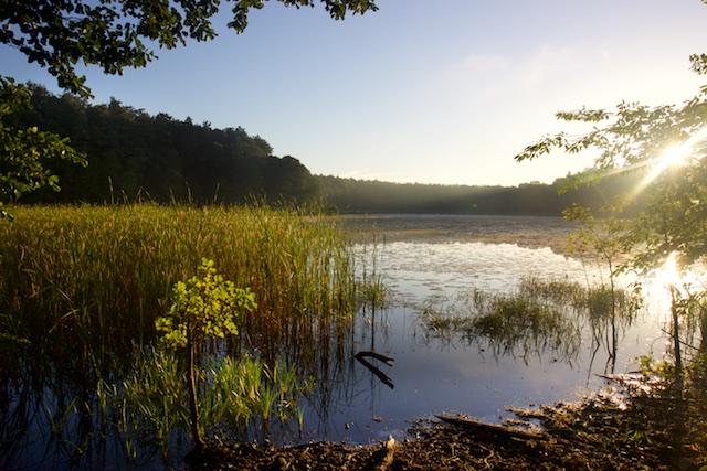Carinhall lag schilderachtig aan de Gross Dolnnsee