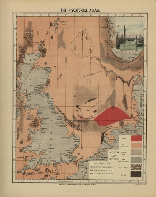 Han Lindeboom wil de Noordzee van 1883 terug, EN tegelijk wil hij de zee volzetten met (impactstudies voor Imares) windturbines