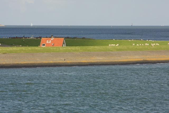Het Horntje; de giga-megamolens van Anne de Groot zouden tot hier de skyine domineren, vooral ook in het donker