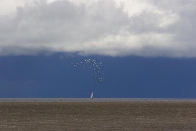 De Waddenzee in oktober, 10 procent van mijn reden om in Friesland te blijven