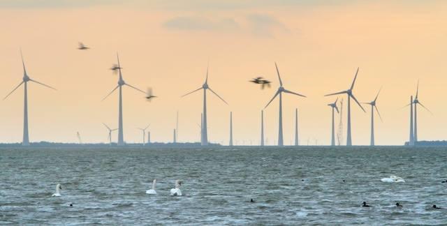 Sfeerimpressie Waddenzee 2020 tussen Kornwerderzand en Wieringen met Windpark Fryslan van milieucrimineel Anne de Groot