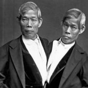 siamese-twins