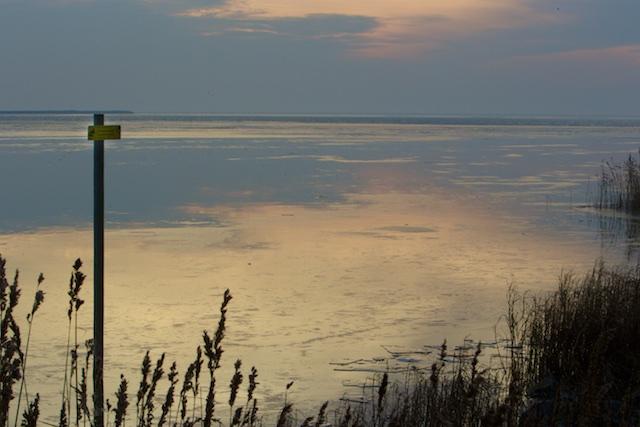 De Locatie van Windpark Fryslan waarin Johannes Annema liefst 127 miljoen euro wil investeren.