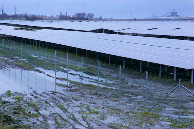 Het 'zonnepark' bij Delfzijl dat die in Ameland overtreft