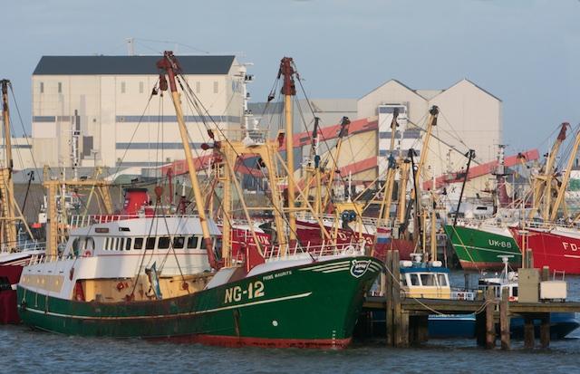De loodsen van Frisia in Harlingen. Zij mogen van Dijksma de bodem met 1 meter laten dalen. Vissers met hun sleepnetje moeten weg vanwege 'bodemberoering' met hun sleepnetje :-)