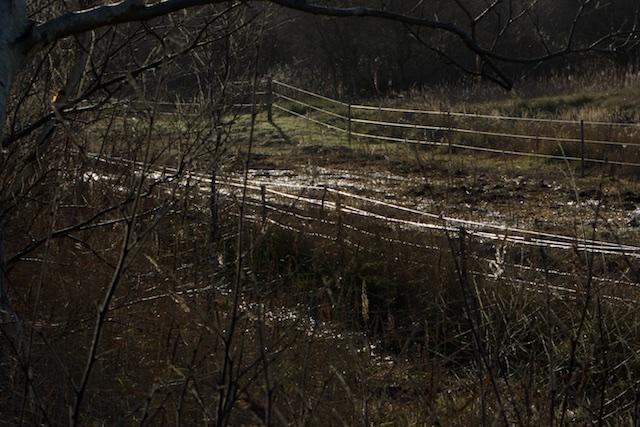 Het IJzeren Gordijn, kilometers lang uitgehouwen bulldozerbrede kloof voor schrikdraadbanen