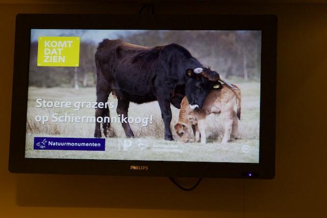 Reclame voor de vleeswinkel van Natuurmonumenten op de boot naar Schiermonnikoog