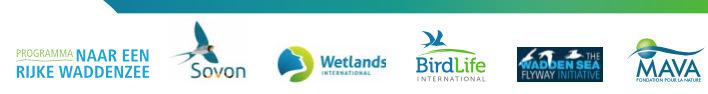 Flyway-onderzoek, met voorwoord van Co Verdaas (PvdA) in een nieuw uurtje-factuurtje-baan als voorzitter Wadden Sea Board