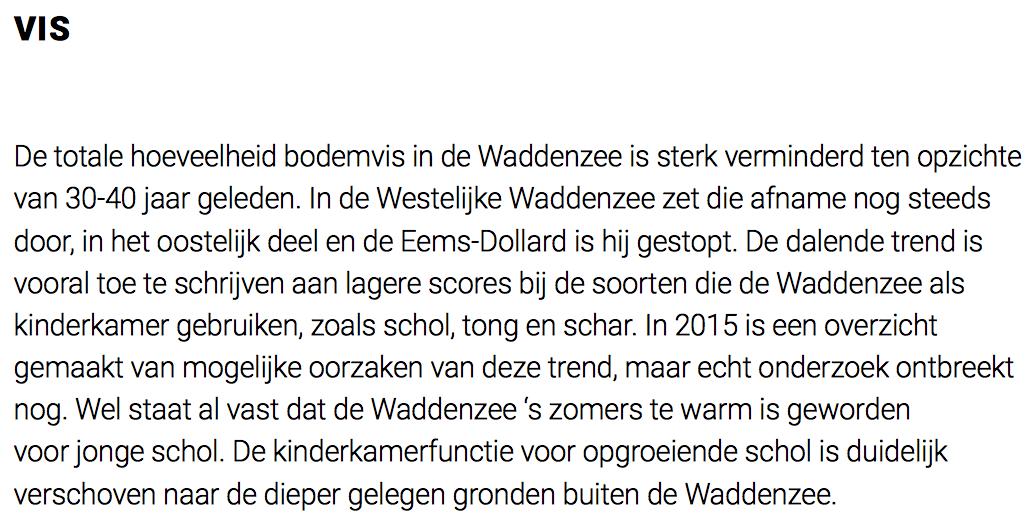 Hier agenderen Rijnsdorp zijn Imares/NIOZ-collegae 'het mysterie' plots als klimaatprobleem