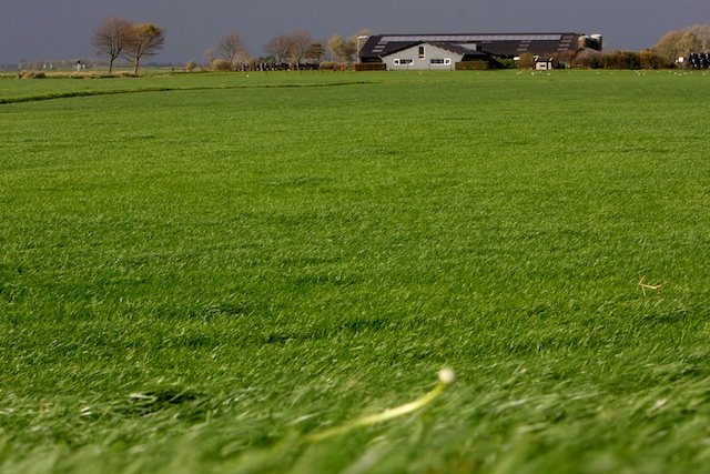 Boeren moesten hyperintensiveren, mede om de lasten van milieubeleid te dragen