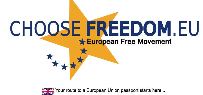 Professionele lobbyisten voor 1 miljoen handtekeningen voor federaal Europa