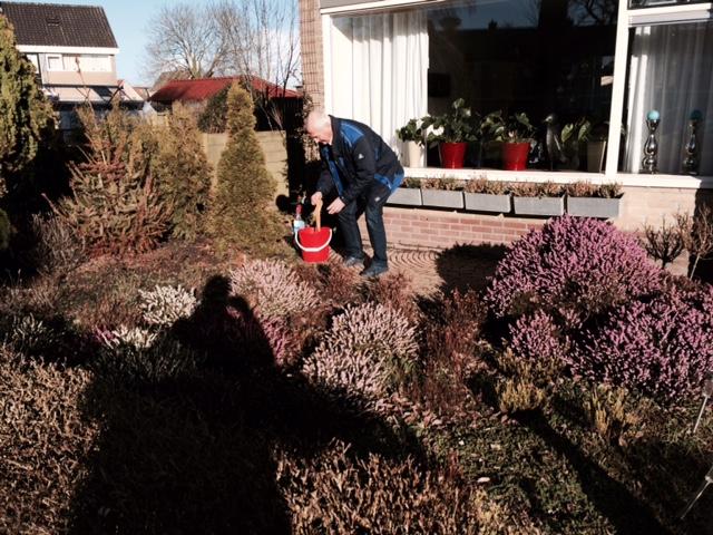 Een vitale opa met bredere interesses vormt uitzondering met zijn eigen tuincentrum-variant op Staatsbosbeheer-heide