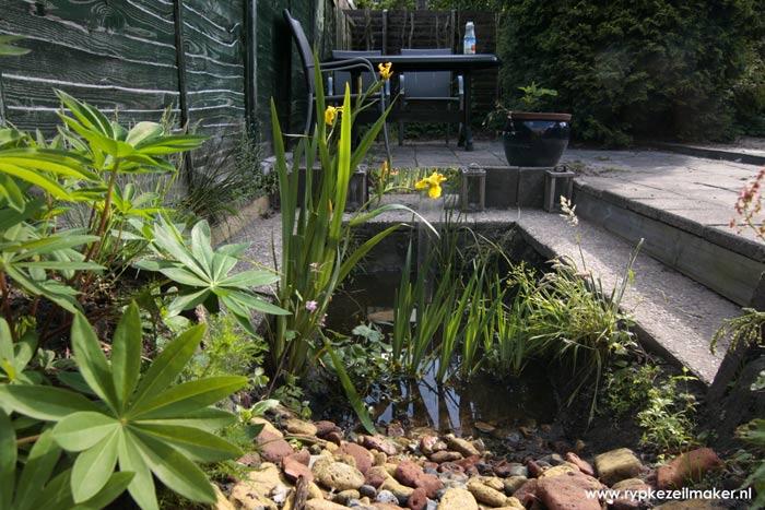 Vijvertje graven en aanleggen met lupine uit tuincentrum en gele lis uit de sloot