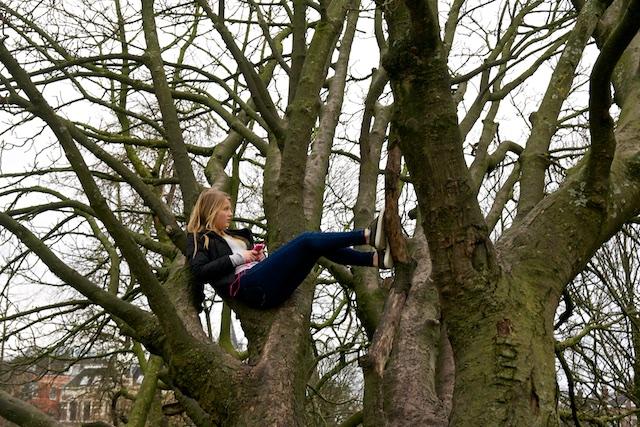 bomen communiceren met elkaar