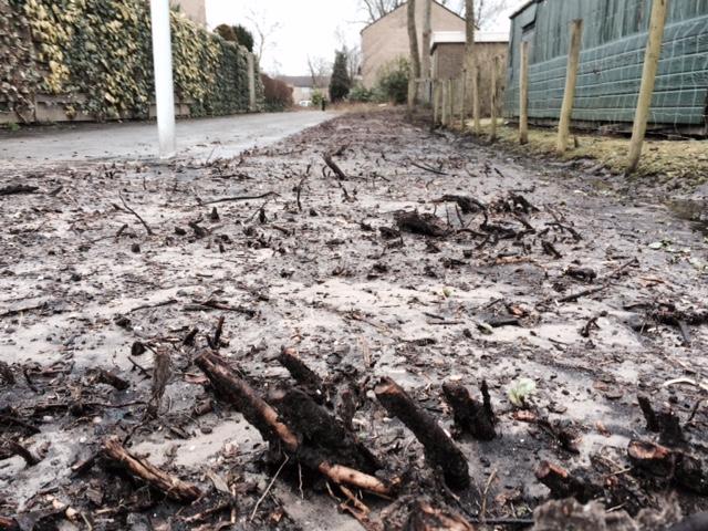 Alle groenperken worden vernield, zodat die sneue boertjes hier met klimaatonzin mee kunnen doen