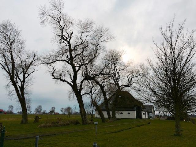 Het oude land bij Stroe, schetsje met mobiele telefoon