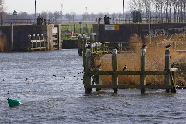 OP de achtergrond, de Wieringermeer-polder die het Geheime Eiland gevangen houdt
