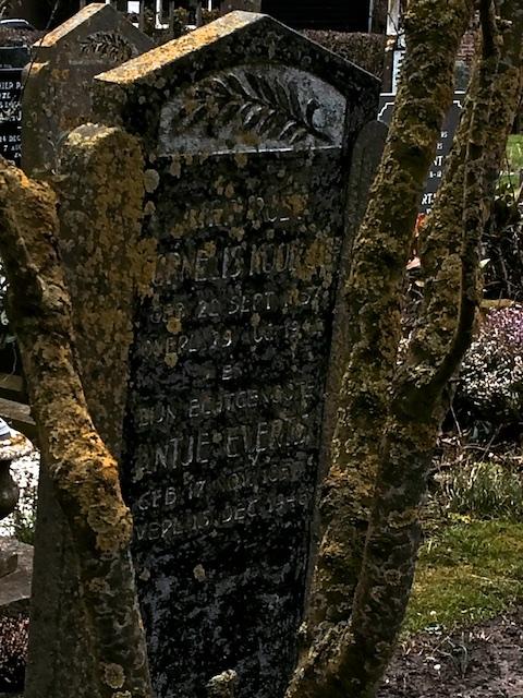 Wieringer graf: de rotganzen dienden in Goelagkampen als bron tegen de hongerdood
