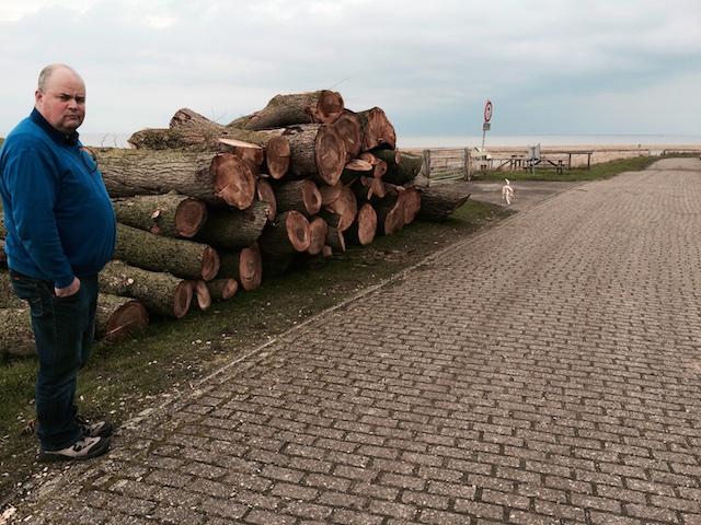 Overwinning van het salonsocialisme op de natuur: het stoken van bomen voor klimaat-vijfjarenplannen, ook op Wieringen