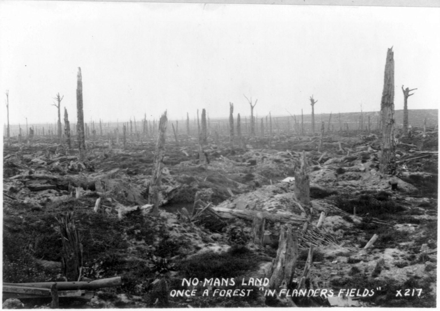 Het groenbeleid van gemeente De Fryske Marren is in 1914-1918 door de Duitsers ontwikkeld
