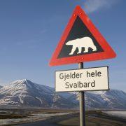 Road sign, Adventdalen